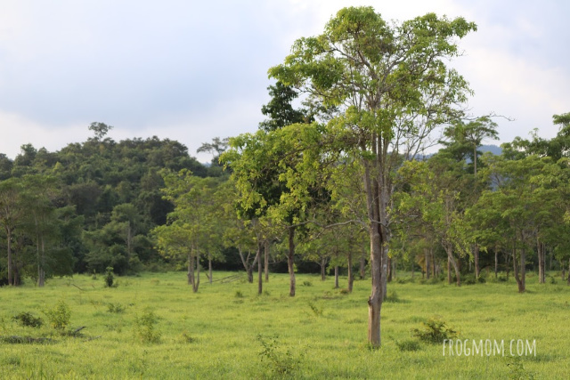 Mountain plateau, Kui Buri National Park, Thailand