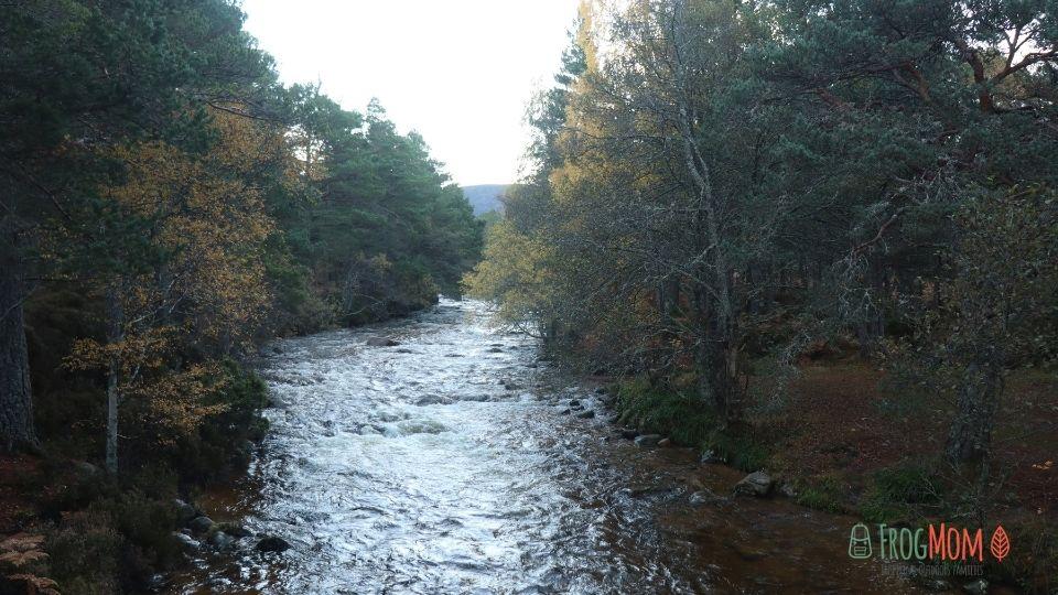 Rothiemurchus Estate - River