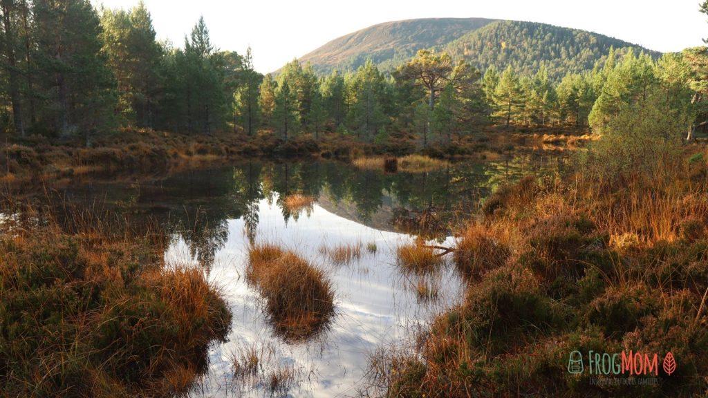 Rothiemurchus Estate - Lochan and Cairngorms
