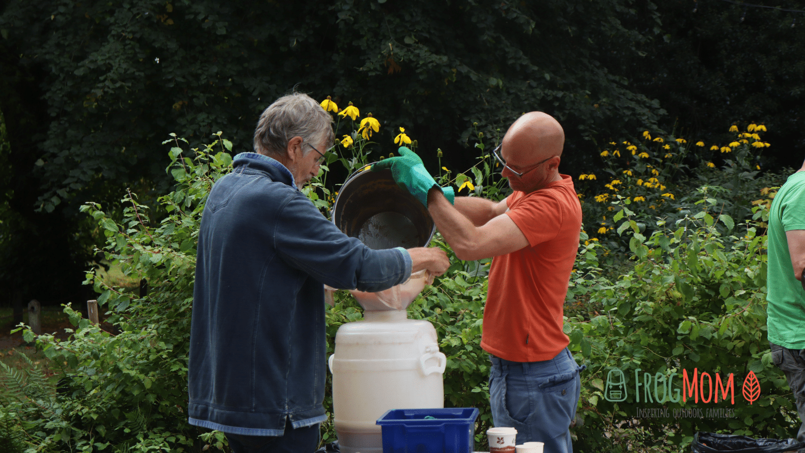 Volunteers straining freshly pressed apple juice through cheese cloth at Polesden Lacey in Surrey, England.